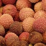 lychee-61506_640 (1)