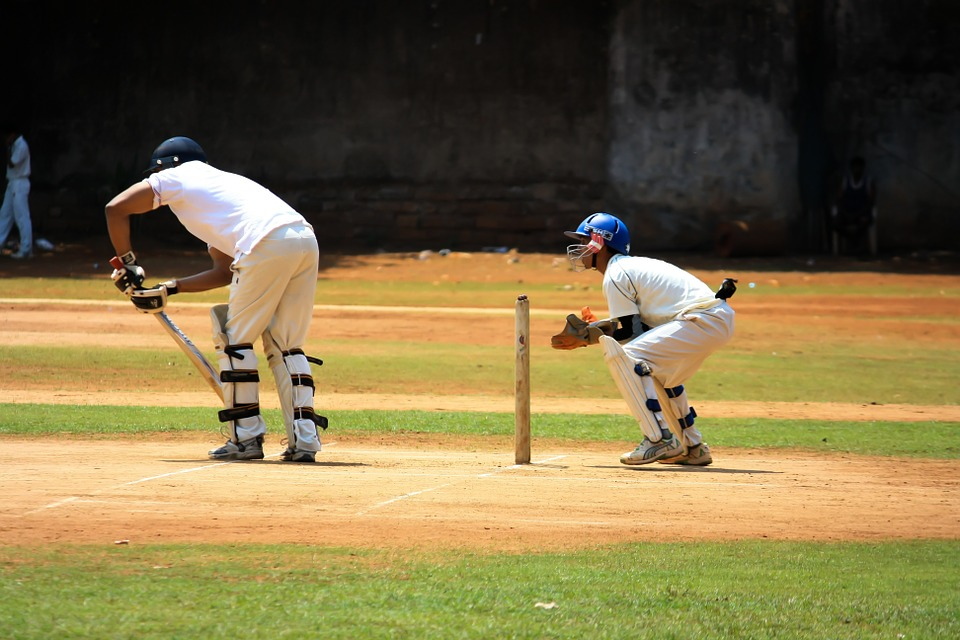 cricket-166930_960_720